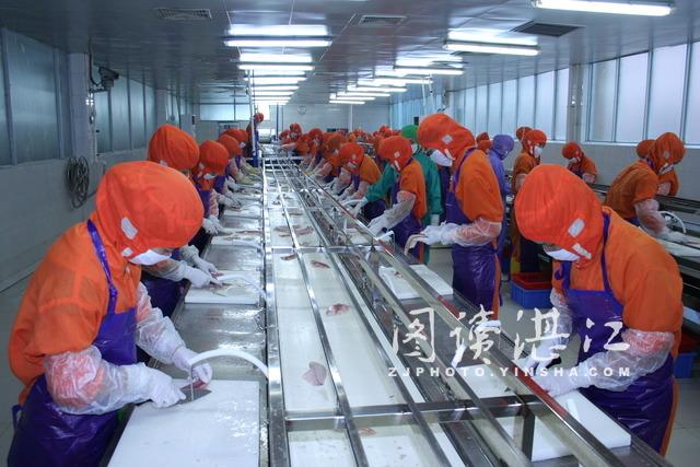 美国启动新的鲶鱼科类检查项目 广东湛江市相关部门和企业应积极应对